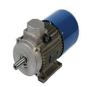 الکتروموتور ital motors